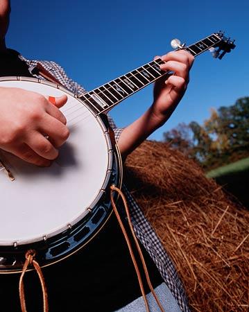 BluegrassMusic
