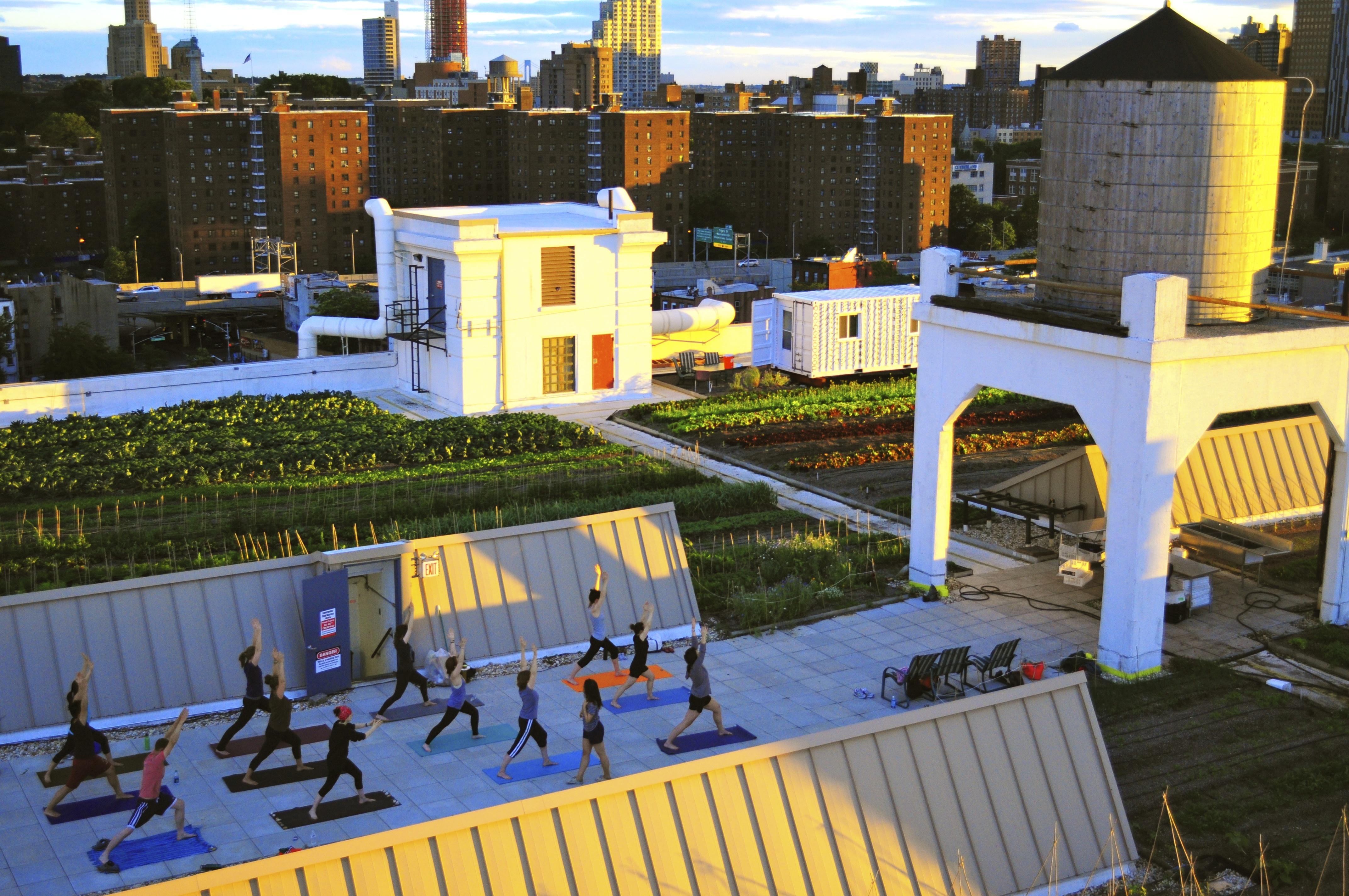 Brooklyn Grange Rooftop Farm Boosts Business Via Events