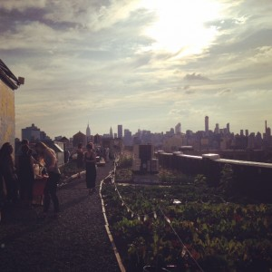 city-growers-urban-farming-benefit