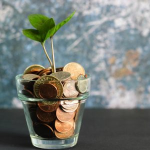 pot of coins with a plant growing out of it